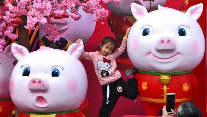 US retailers prepare to ring in the Year of the Pig