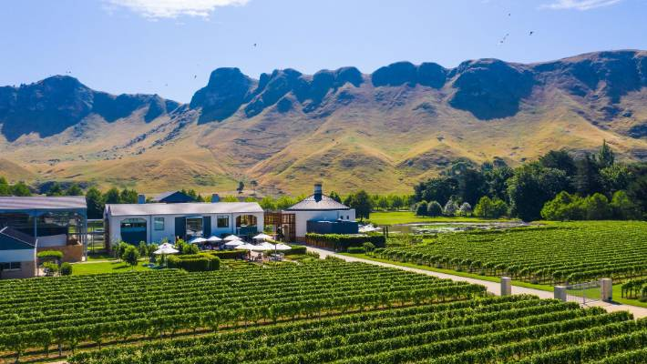 The cellar door tasting at Craggy Range was exceptional - their staff are hugely knowledgeable.