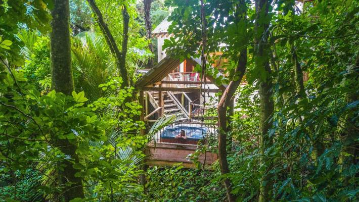 Listen to the sounds of the forest in the treehouse spa at Te Nikau Forest Retreat.