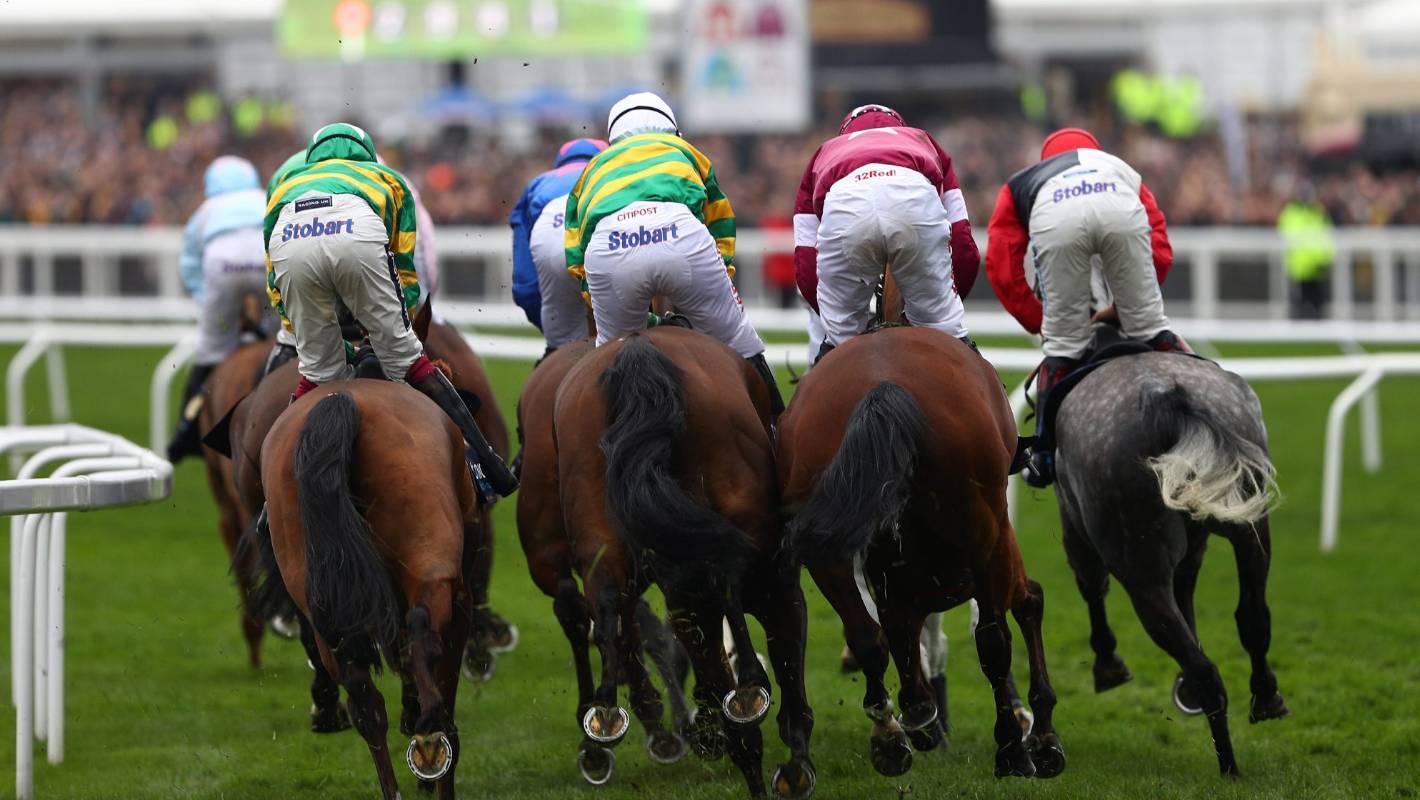 Equine Flu: Equine Flu Cancels Horse Racing In UK Until Wednesday At