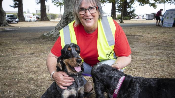 Animal Evacuation NZ volunteer Chris Stewart was an eye witness to the fire at Walters Bluff in Nelson on Friday. She is now dedicating her time caring for animals at the Richmond Showground.