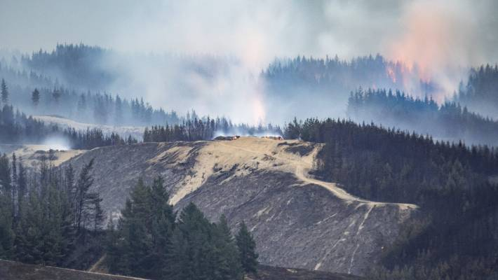 Firefighters are continuing to work on Nelson bush fires which broke out in Pigeon Valley on Tuesday. Golden Hills Rd was cordoned off as a result of the blaze.