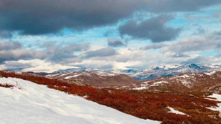 Torngat Mountains National Park, Greenland.