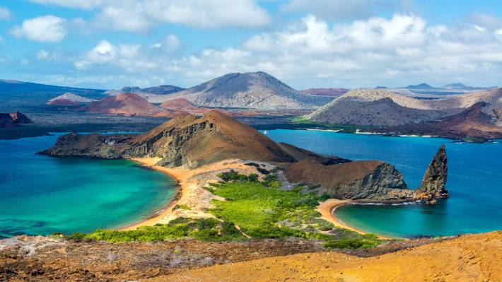 The Galapagos islands are home to a huge variety of wildlife (file picture).