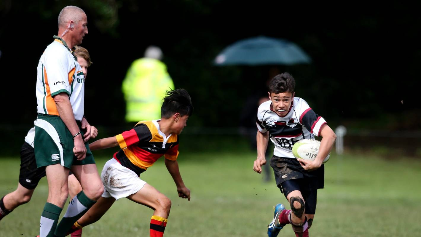 Junior representative rugby programme removed by North Harbour