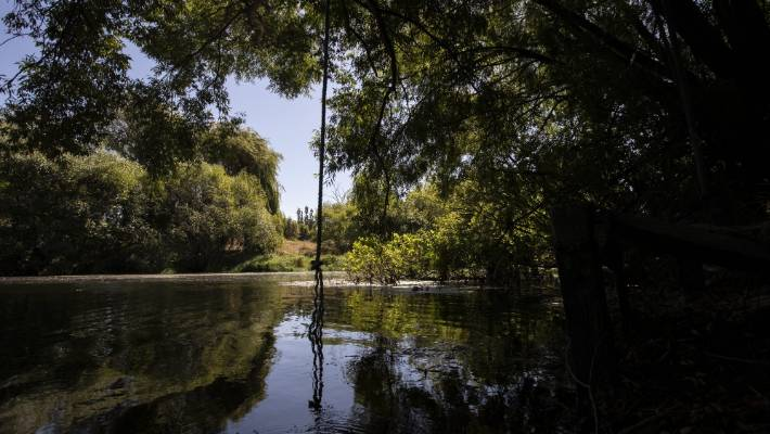 The Selwyn River has been polluted for the last decade, but after a wet spring, has been swimmable over part of the summer.