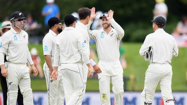 Williamson Lauds New Zealand's 'Patience' on Tough Hamilton Surface