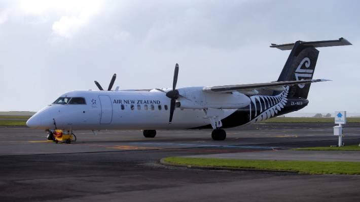 Flight to Napier returns to Auckland after suspected bird