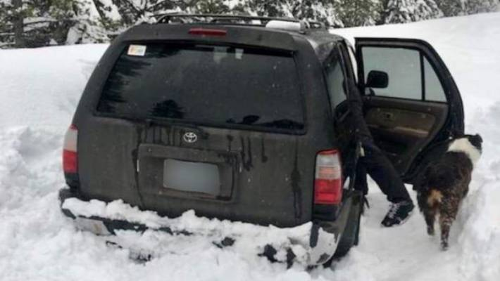 Man and dog snowbound in Oregon survive on taco sauce