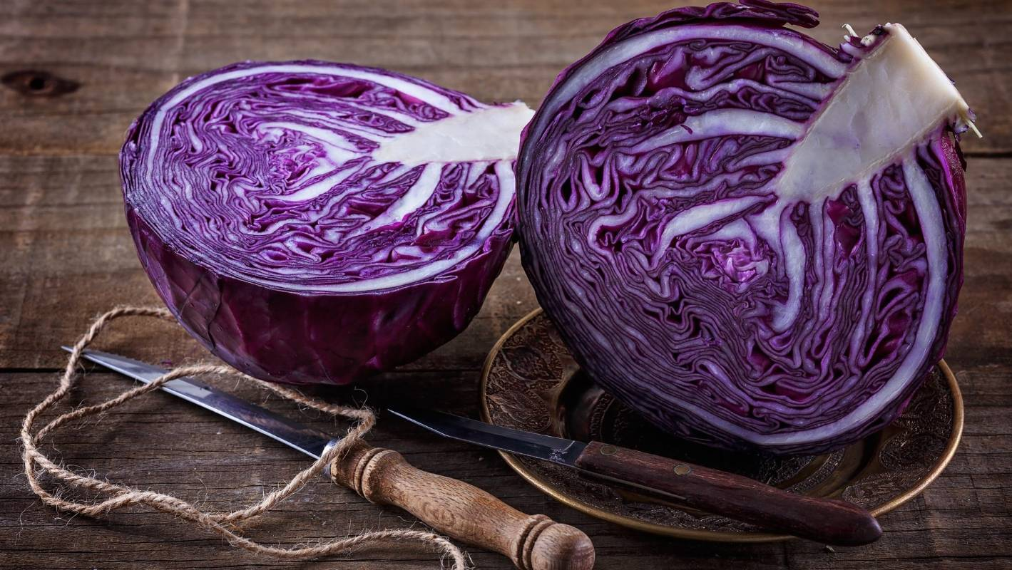 Cabbage: how to plant, care and harvest | Stuff.co.nz