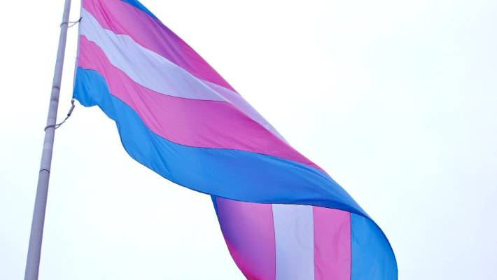 The transgender pride flag.