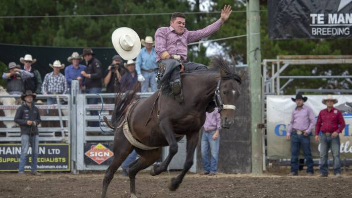 Horse Death At Rodeo National Finals Prompts New Calls For