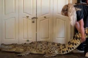 Vicki Lowing and saltwater croc Jilfia.