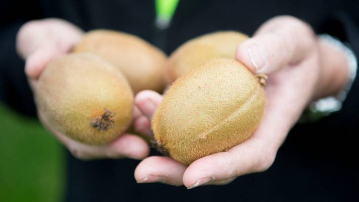 Earth Day 2019: Ditch the plastic and let your fruit and veg roll free in your supermarket trolley to save the planet