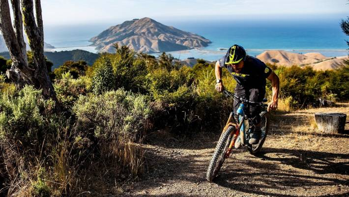 Cable Bay Adventure Park's mountain bike tracks offer great views of the incredible landscape.