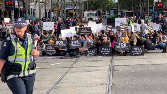 Vegan 'activists' cause morning chaos in CBD