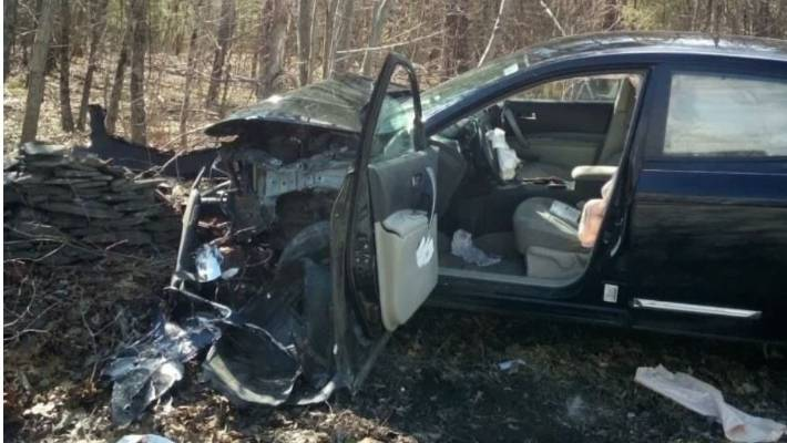 New York woman crashes car after spotting spider in driver's area