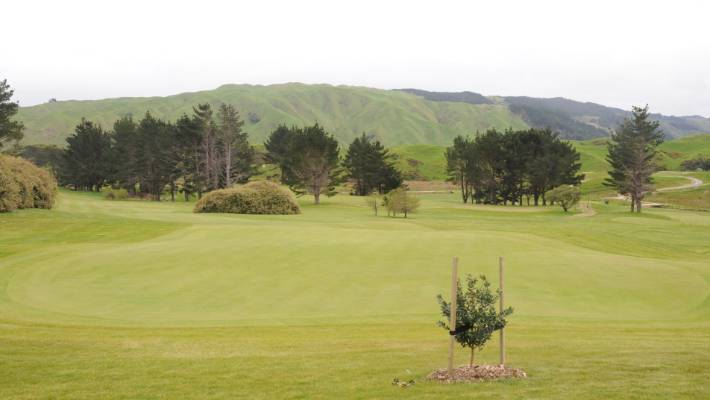 One of the greens at the nine-hole Pauatahanui Golf Club.