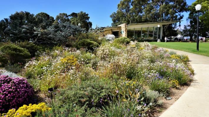 Kings Park Gardens, Perth, Western Australia.
