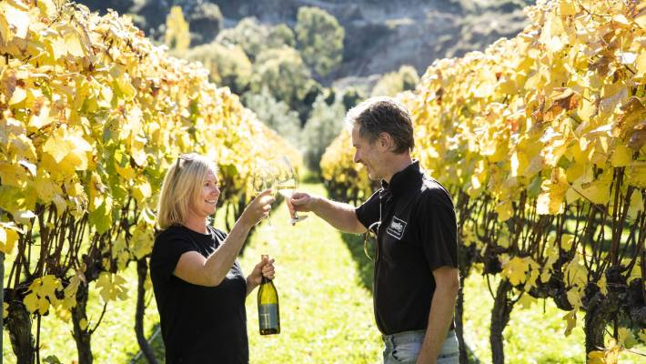 Image result for RIWAKA WINES