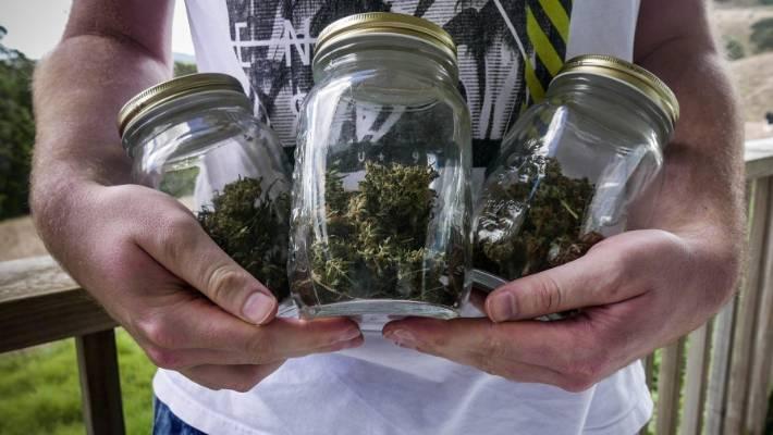 Cannabis referendum: A snapshot of MPs' views   Stuff co nz