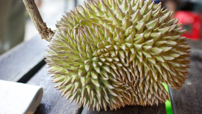 Durian fruit stink prompts university evacuation
