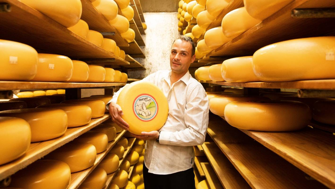 Waikato cheesemaker named country's best two years in a row