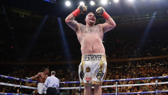 Why being fat works for new world heavyweight champion Andy
