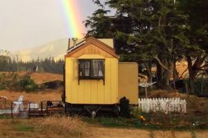 The mustard-yellow tiny house brought the dream of 'tiny' living true for Nick Barnett and his husband.