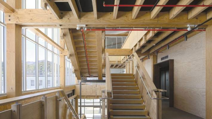 Carbon Storing Engineered timber structure used in the NMIT Arts and Media Building, Irving Smith Jack Architects.