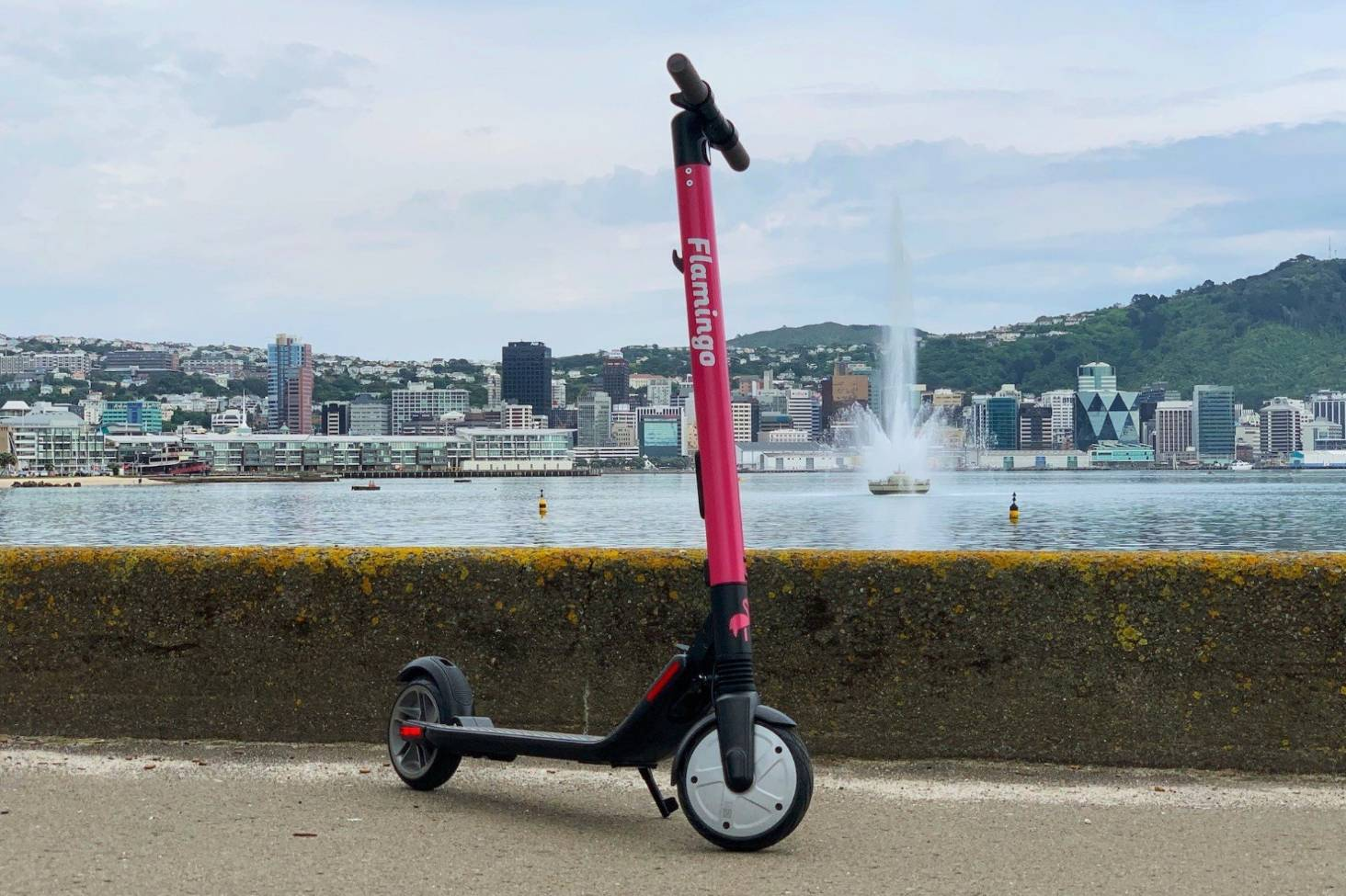 E-scooter wars advance on capital's narrow streets as
