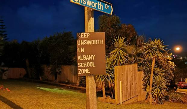 Albany Primary School: Ministry of Education delays rezoning decision