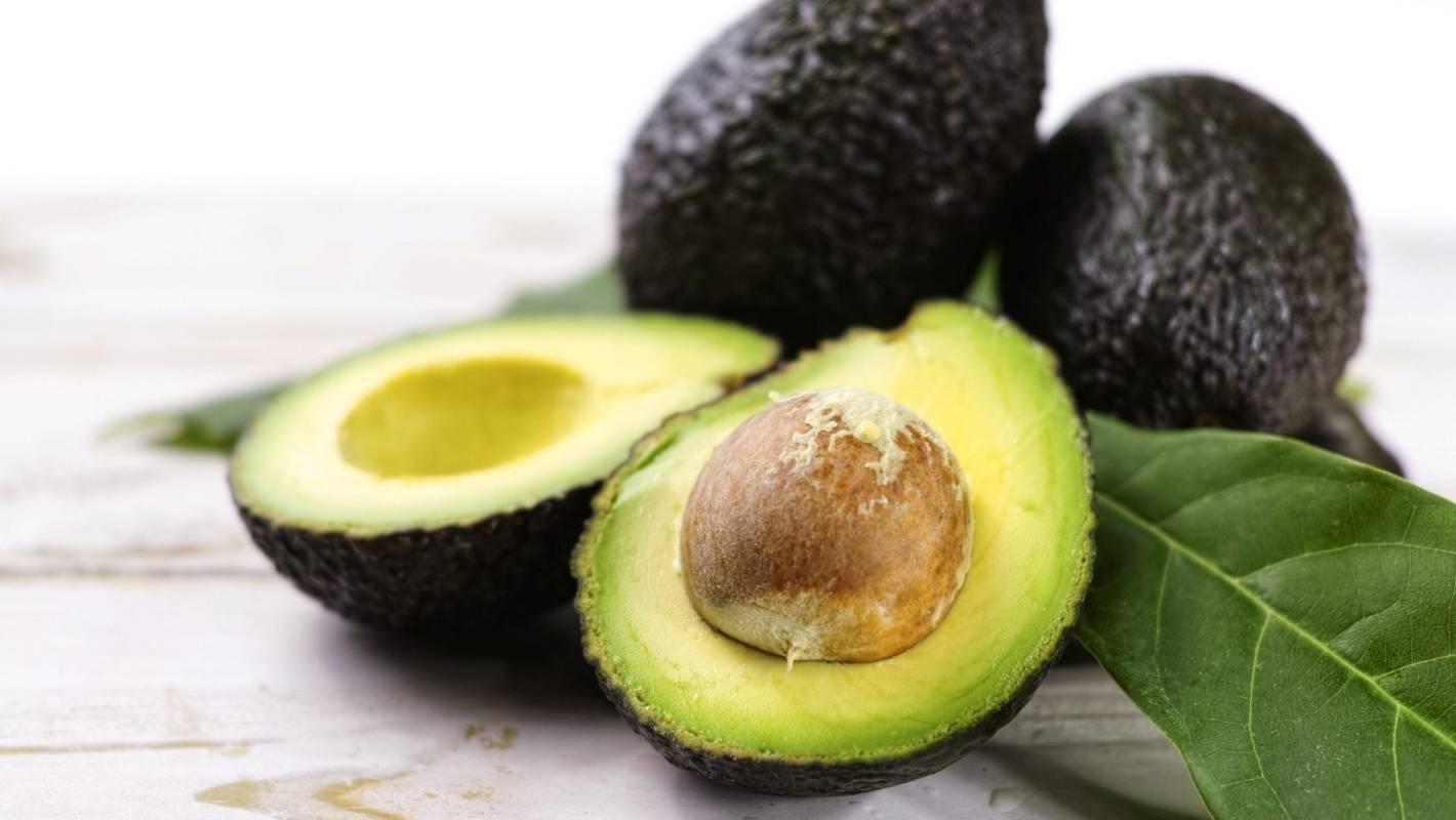 Avocado prices plunge as new season starts