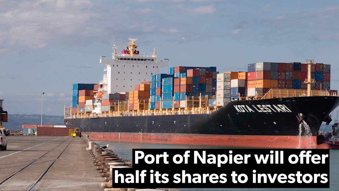 Image result for hawkes bay port privatise