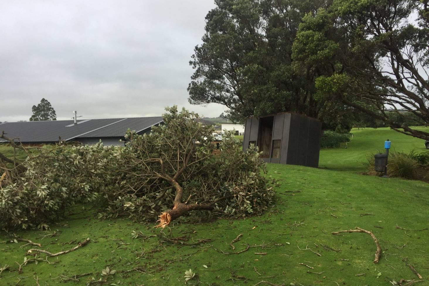 Two buildings, trees, trampoline damaged by Taranaki tornado