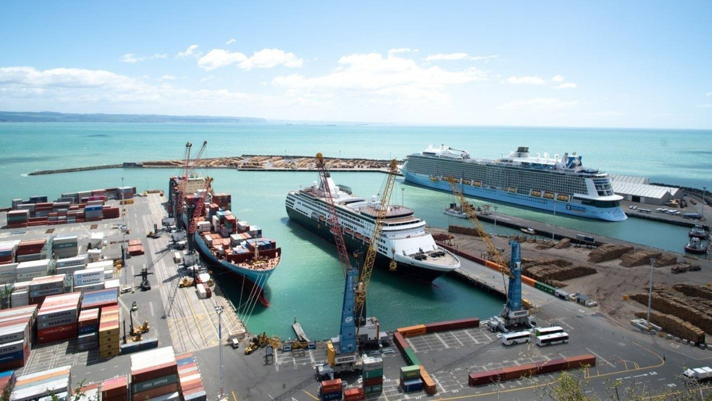 Napier Port hopes to raise up $234m in an initial public offering of 45 per cent of the company