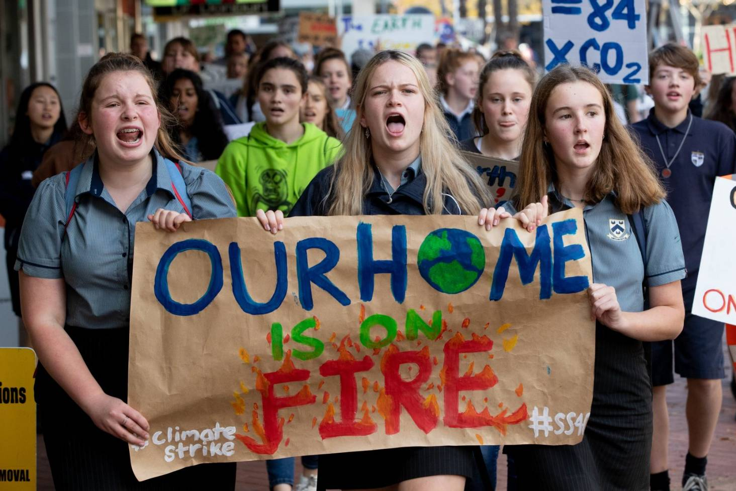 Image result for auckland protest climate crisis