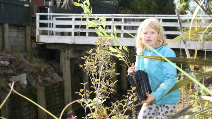 York Stream community get together for clean-up | Stuff co nz