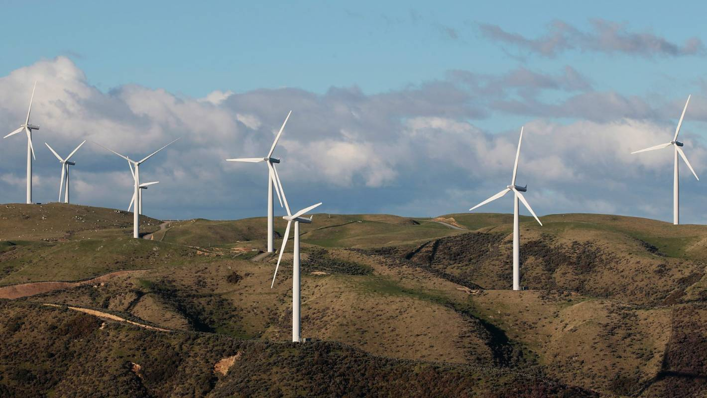 Wind energy surge expected while overseas worries about bird