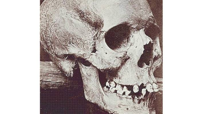 The worldwide hunt for the bones of a 'witch' | Stuff co nz