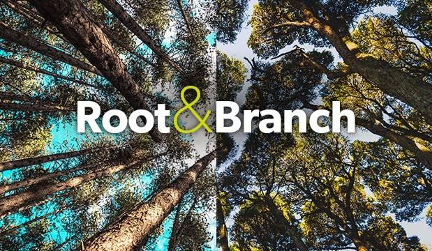 Root & Branch (defcon)