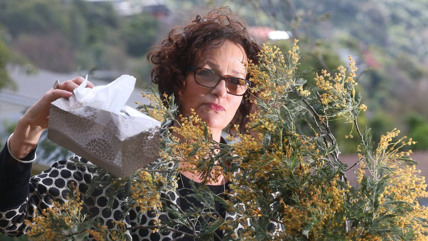 Wattle you do about hay fever, council candidates asked