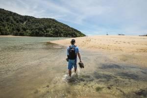 A tramper crosses Awaroa Bay at low tide in the Abel Tasman National Park.