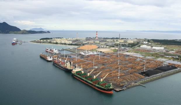 Northland environmentalists say 'no' to Auckland port shift