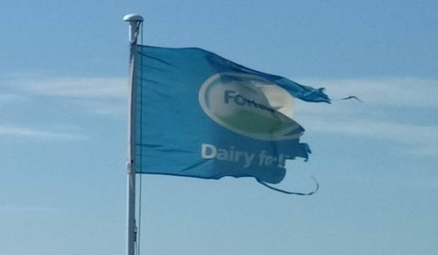 Fonterra's slow road to redemption after a terrible year