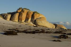 The four-day Bay of Fires trail is a walk along a beach, basically.
