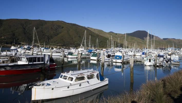Young boy found dead in Marlborough port town | Stuff.co.nz