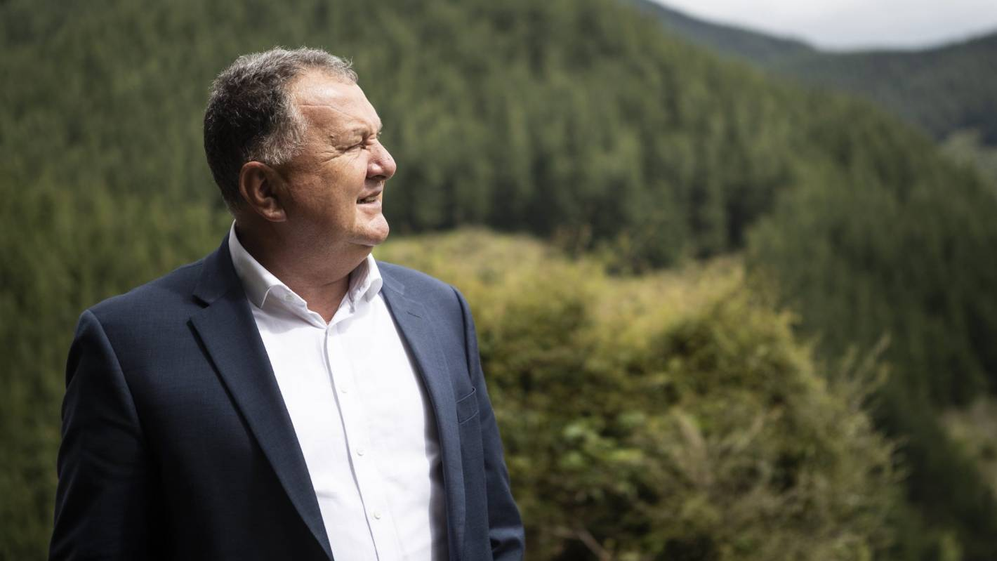 European bluebloods buy large North Island farms for forestry conversion