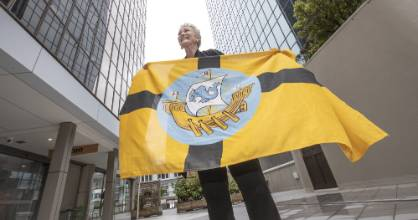On Monday, Wellington city councillor Nicola Young said revived usage of the Wellington flag and coat of arms could help ...