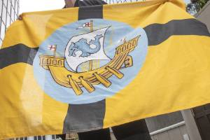 """Councillor Nicola Young says revived usage of the Wellington flag and coat of arms could help foster a sense of """"civic ..."""